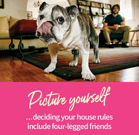Picture yourself ...deciding your house rules include four-legged friends